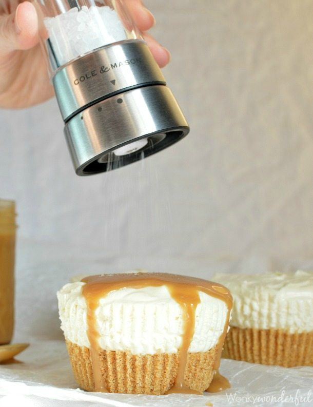 Mini Eggnog No Bake Cheesecake Recipe. Individual Cheesecakes flavored with eggnog and topped with Salted Eggnog Caramel Sauce! Perfect Holiday Dessert!