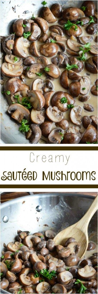 Creamy Sauteed Mushrooms make a great side dish or gravy alternative. Eat these flavorful mushrooms over a steak or on top of mashed potatoes. The perfect addition to any holiday feast!