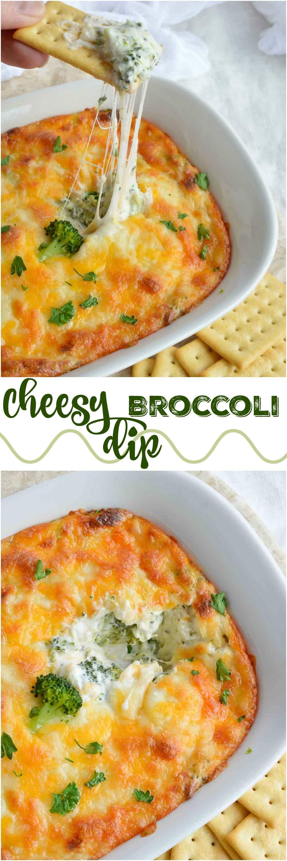 recipe: broccoli appetizer recipes [38]