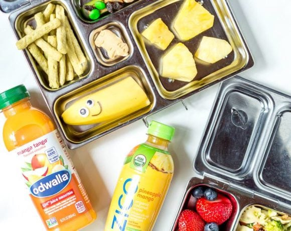 Easy Snack and Lunch Ideas