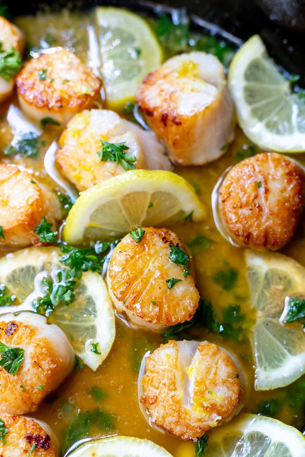 seared scallops in a fresh lemon butter parsley sauce